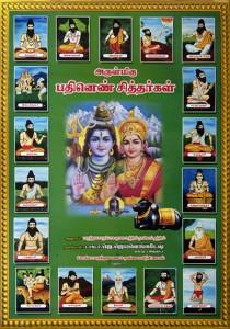 Siddha, part of the 3 trad  Indian Medicines   Deinayurveda net